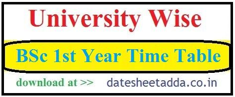 BSc 1st Year Time Table 2021
